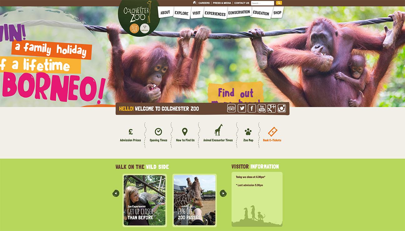 Colchester Zoo Home page image